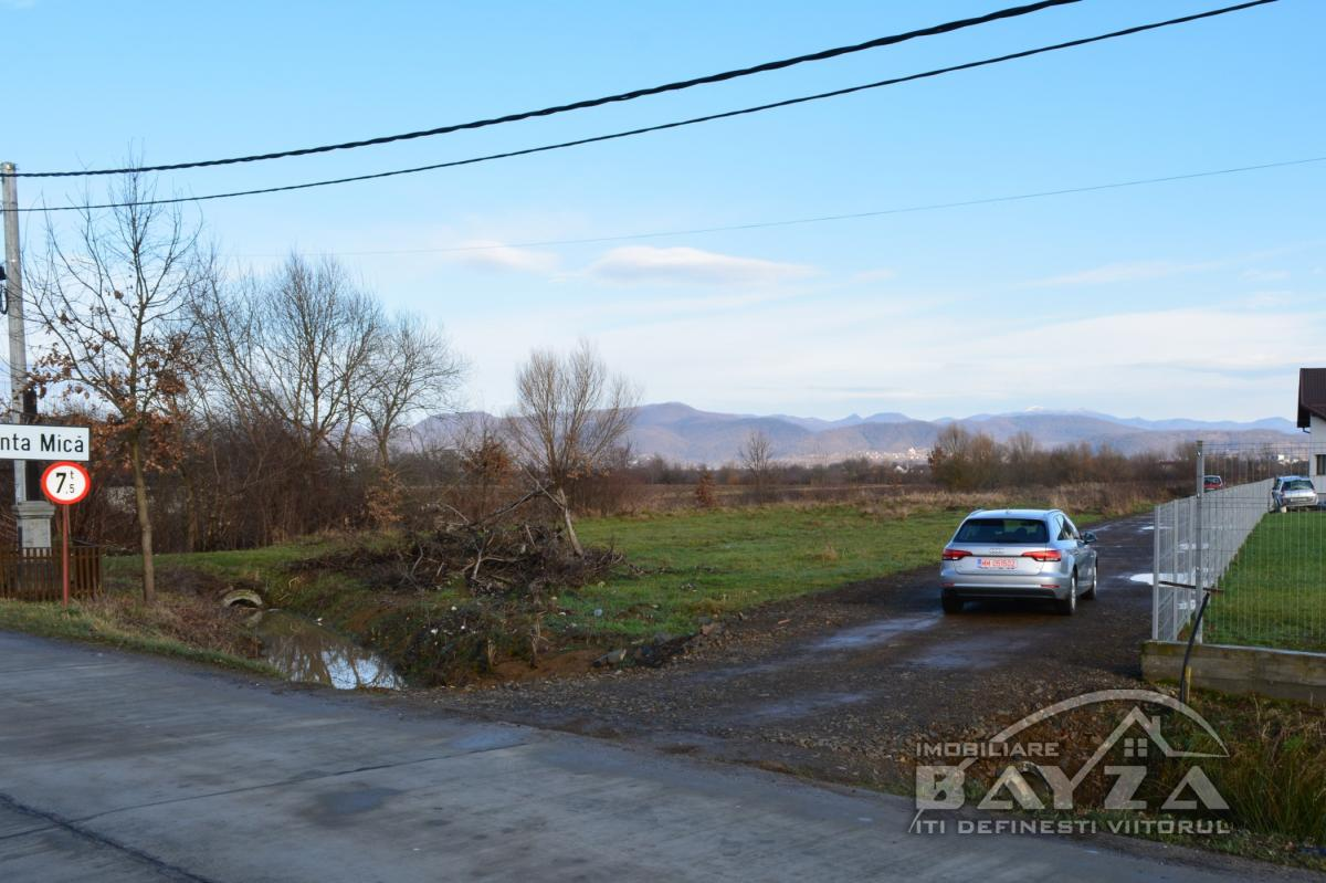 Pret: 1100 EURO, Vanzare teren, zona Bozanta Mica