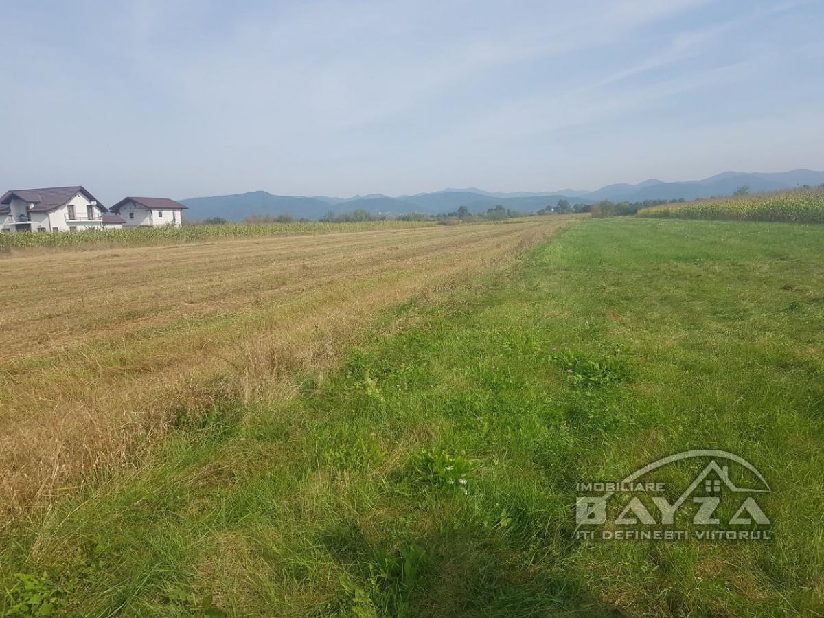 Pret: 800 EURO, Vanzare teren, zona Bozanta Mica