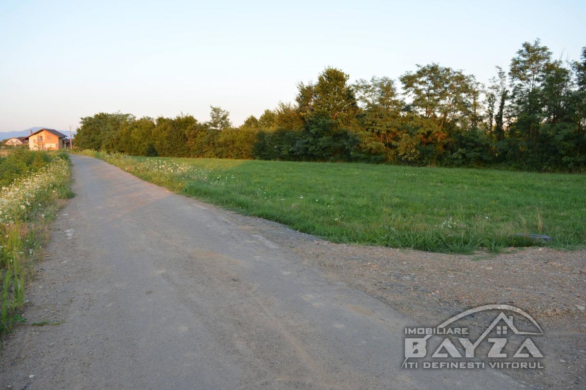 Pret: 850 EURO, Vanzare teren, zona Bozanta Mare