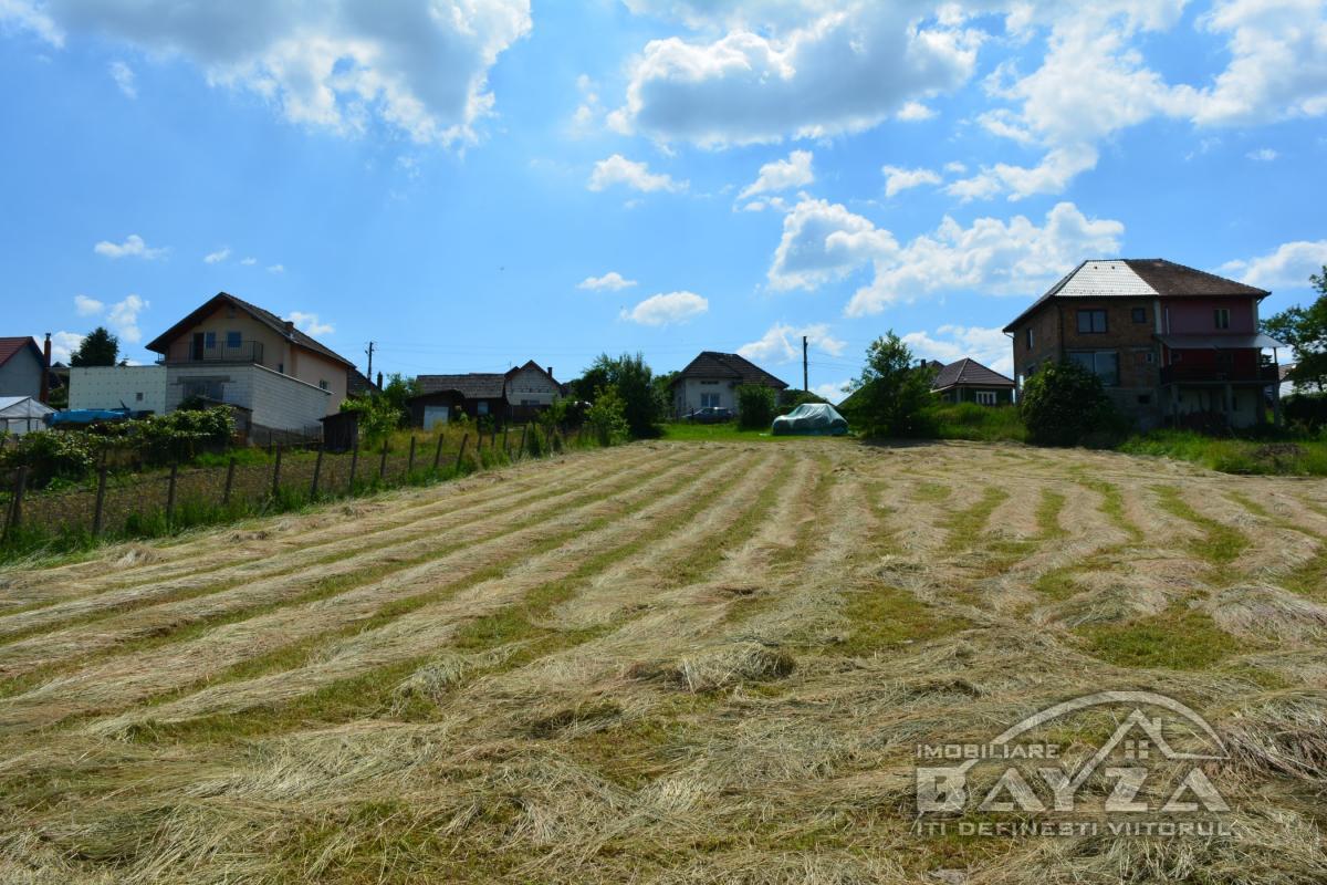 Pret: 1.780 EURO, Vanzare teren, zona Coltau
