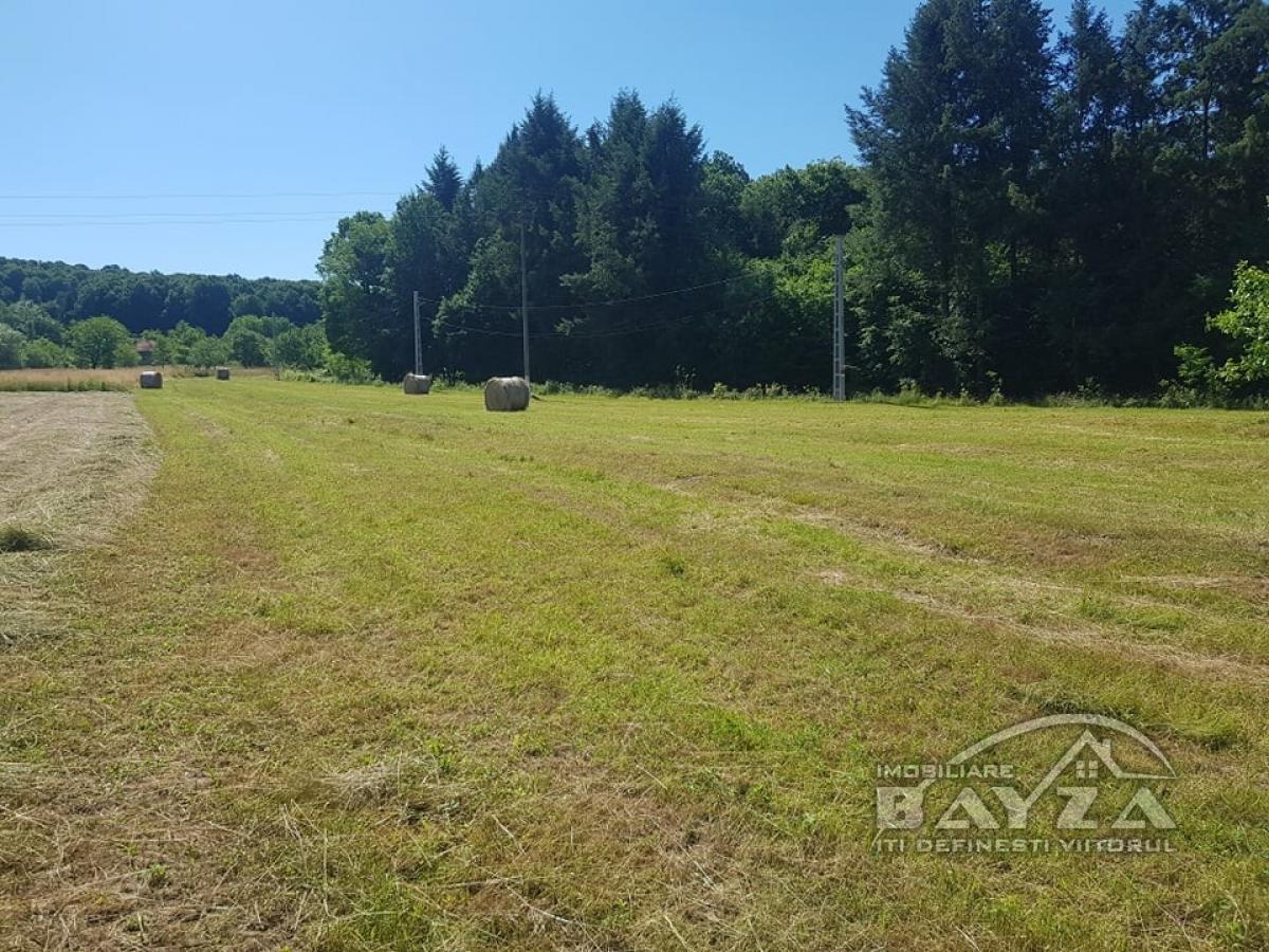 Pret: 400 EURO, Vanzare teren, zona Localitatea Vad - Copalnic Manastur