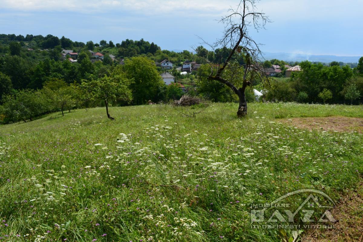Pret: 1.000 EURO, Vanzare teren, zona Ocolis