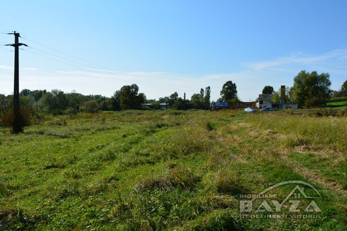 Pret: 950 EURO, Vanzare teren, zona Ocolis