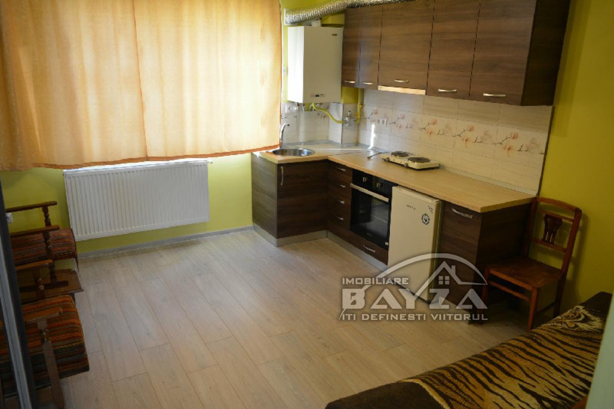 Pret: 28.000 EURO, Vanzare apartament 1 camere, zona Strada Nucului
