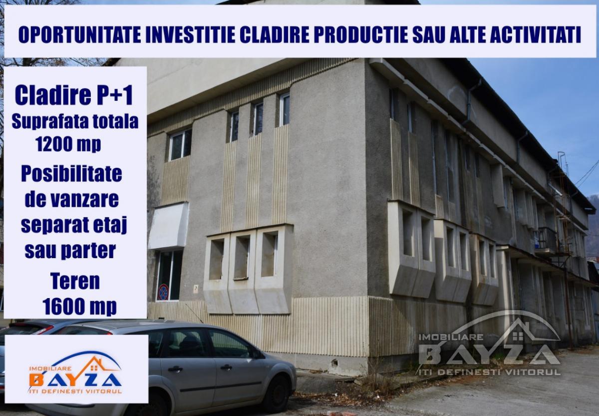 Pret: 400000 EURO, Vanzare spatiu / hala industriala, zona Victor Babes