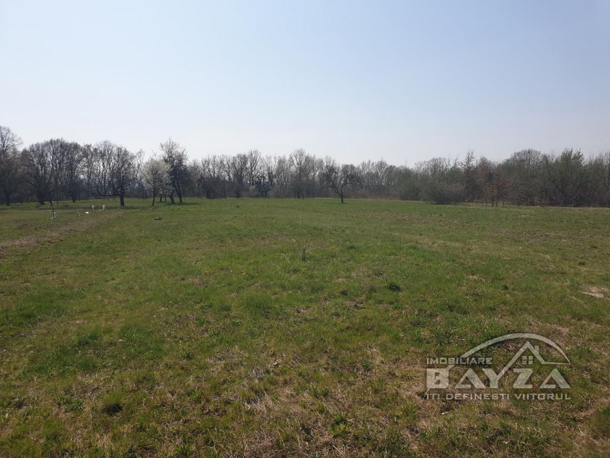 Pret: 2200 EURO, Vanzare teren, zona Satu nou de Jos - zona Piscinei la Nuci