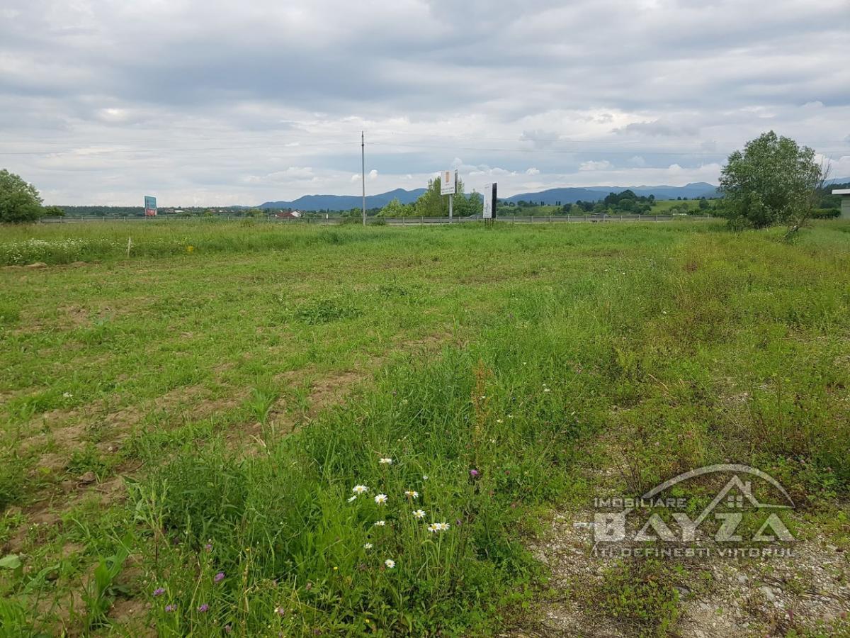 Pret: 1800 EURO, Vanzare teren, zona Romanita