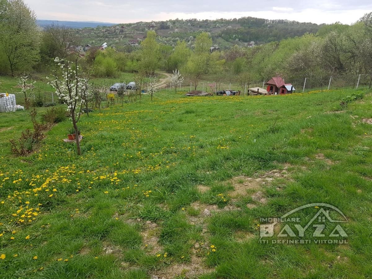 Pret: 16500 EURO, Vanzare teren, zona Valea Borcutului