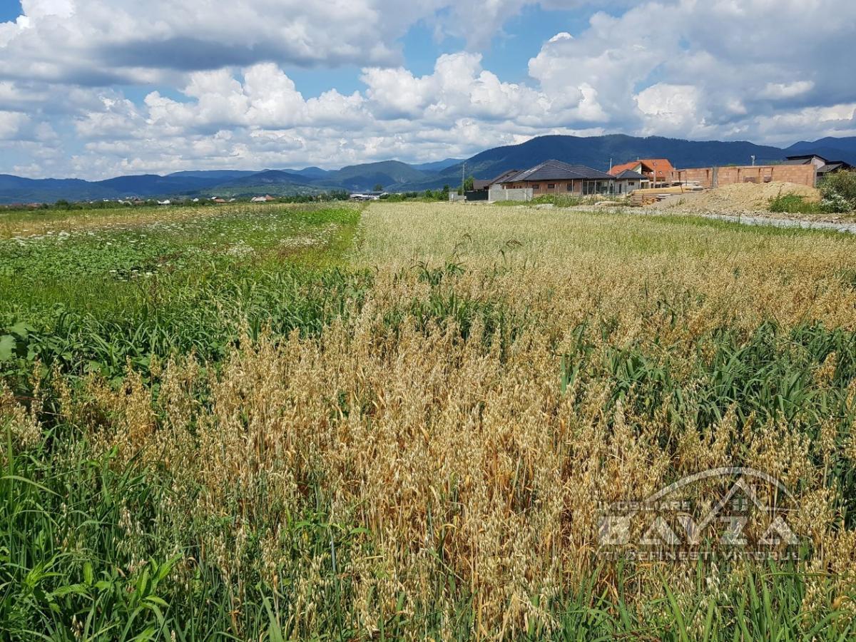 Pret: 2100 EURO, Vanzare teren, zona Mocira
