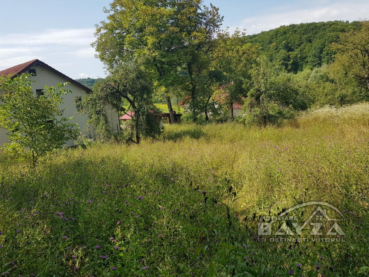 Pret: 55000 EURO, Vanzare teren, zona Grosi