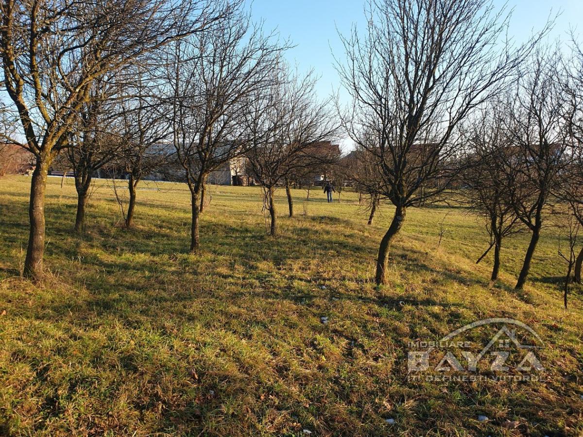 Pret: 1300 EURO, Vanzare teren, zona Grosi