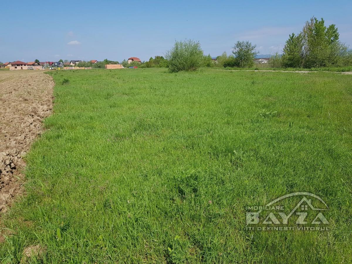 Pret: 1500 EURO, Vanzare teren, zona Coltau